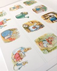 peter-rabbit-cake-border-edible-icing-wafer-card-top-my-bake